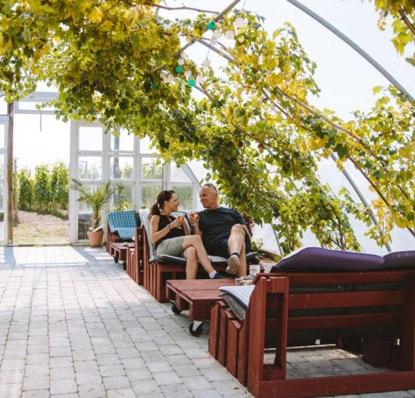 A couple enjoying a glass of wine in the orangerie at Årø Vinyard.