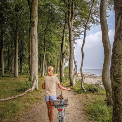 Lady walks with a bike in Hornbæk plantage, Denmark
