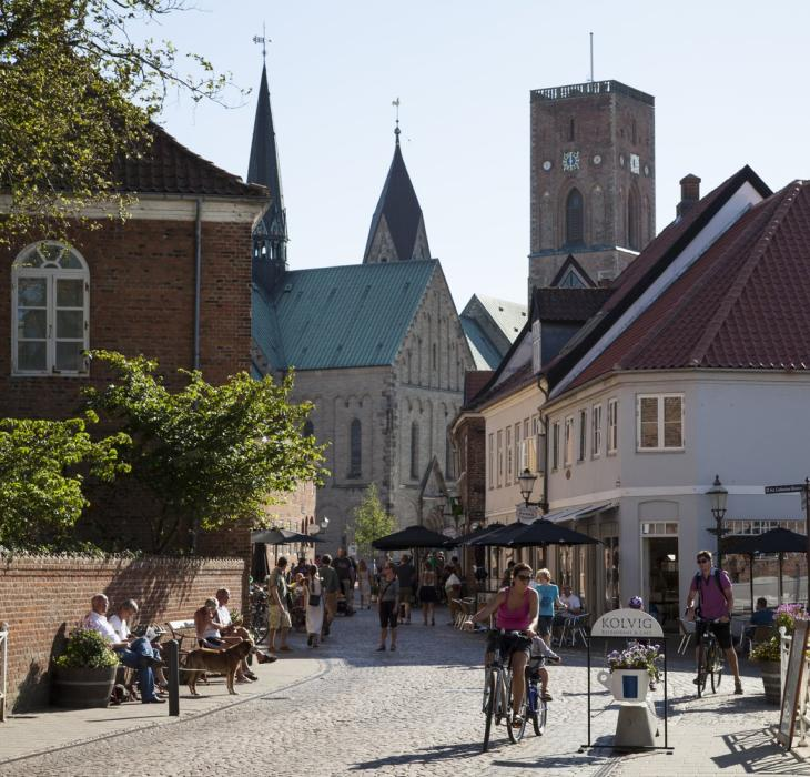 Denmark's oldest town Ribe